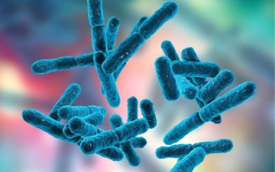Probiotyki i prebiotyki w kosmetykach